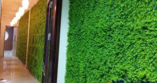 cỏ nhựa trang trí tường, Cỏ nhân tạo trang trí, Lê Hà Vina, Cỏ nhựa trang trí, Cỏ nhựa nhân tạo